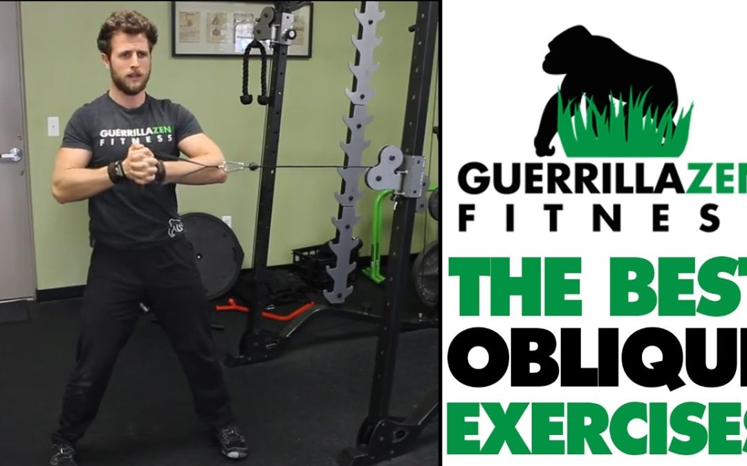 The Best OBLIQUE EXERCISES OF ALL TIME!